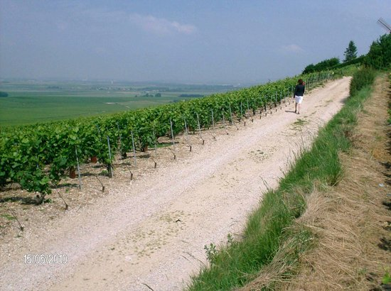 Champagne-Ardenne Photo