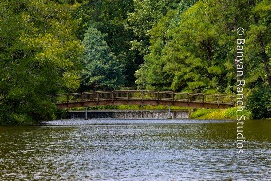 Pine Mountain, Georgien: Bridge-to-calm, Callaway Gardens walkabout
