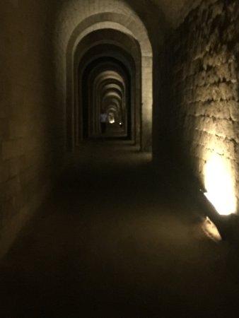 Parco Archeologico Pausilypon: uno scorcio di interni
