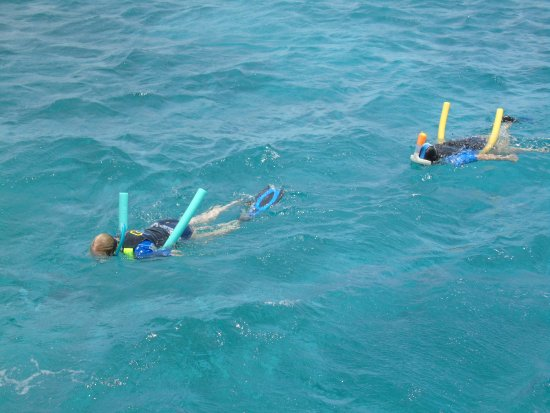Jolly Harbour, Antigua: swimming to the reef