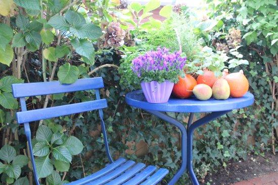 Винзен, Германия: Zwei Plätze im Garten