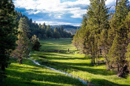 Aspen Ridge Resort Image