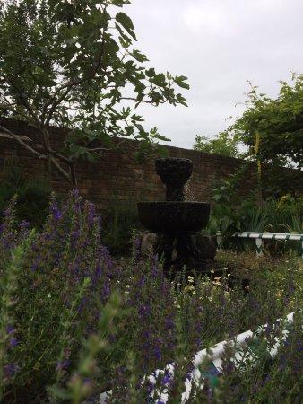 Tudor House and Garden: photo2.jpg