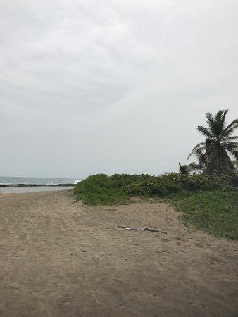 Playa Sardinera: Sard
