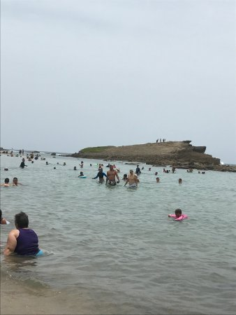 Playa Sardinera : Sard