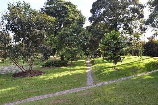 Jardín Botánico de Bogotá Jose Celestino Mutis: Garden