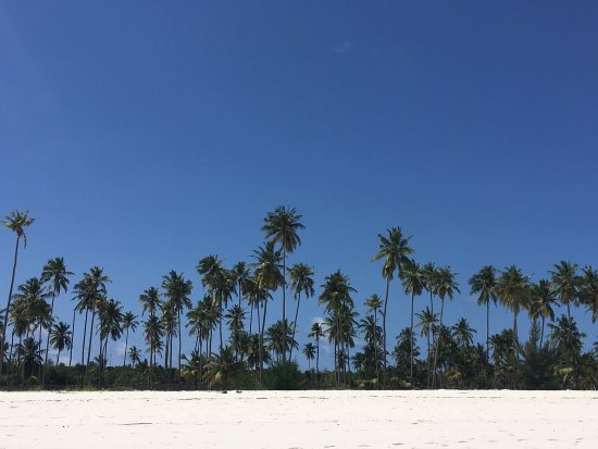Michamvi, Tansania: photo3.jpg