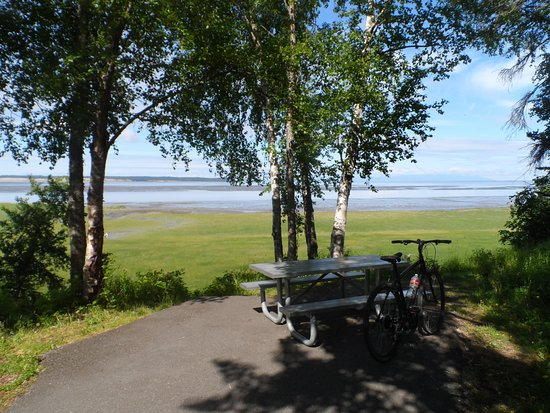 Tony Knowles Coastal Trail Anchorage Ak Top Tips