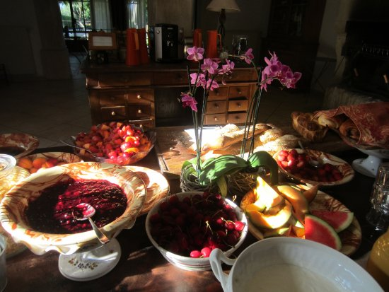 Lagnes, France: Lots of fresh fruit and delicious fruit compote