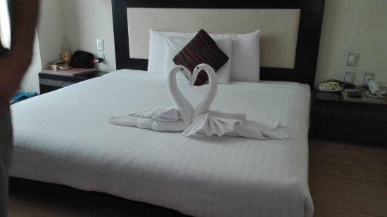 Hotel El Punto: IMG_20170206_113651_large.jpg