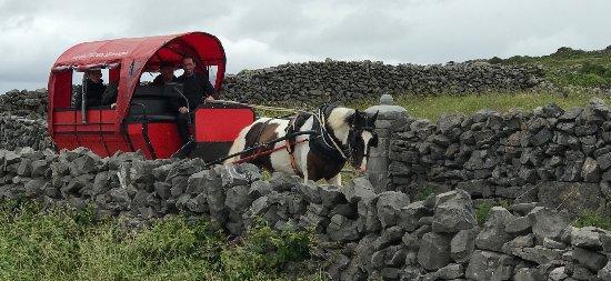 Greystones, İrlanda: Aran Islands