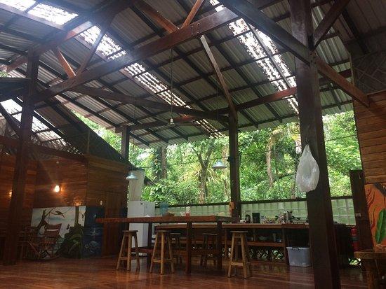Manzanillo, Costa Rica: photo5.jpg