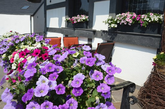 Wahlhausen, Luxemburgo: Flowers