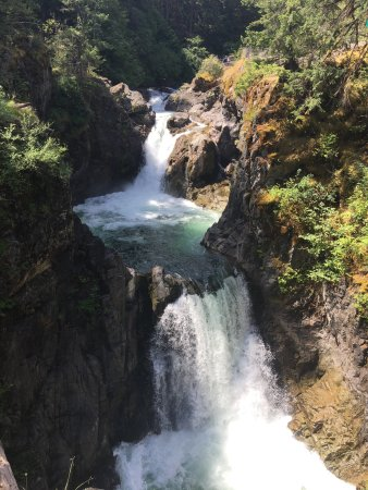Little Qualicum Falls Provincial Park: photo0.jpg