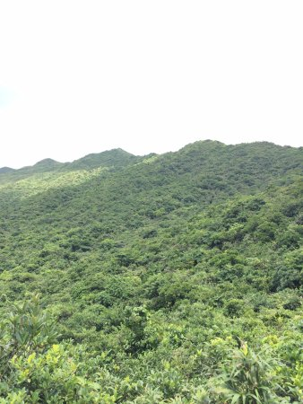 Dragon's Back: Picture of the scenery as you hike