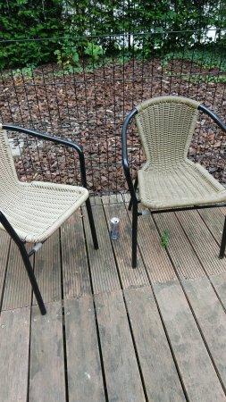 Anderlecht, Bélgica: Ronces, mégots, canettes vides et autres détritus dans le jardin : aucun entretien.