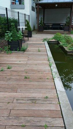 Anderlecht, Belgien: Ronces, mégots, canettes vides et autres détritus dans le jardin : aucun entretien.