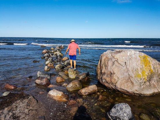 Tofta, Σουηδία: Gotlands Surfcenter