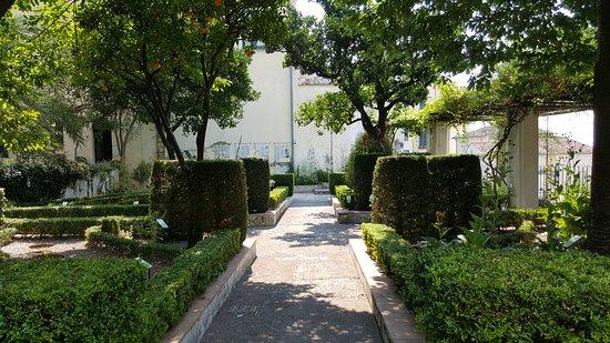 place to be foto di giardino della minerva salerno