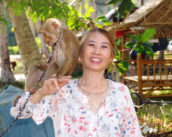 Wandee Tours: Me with a Monkey