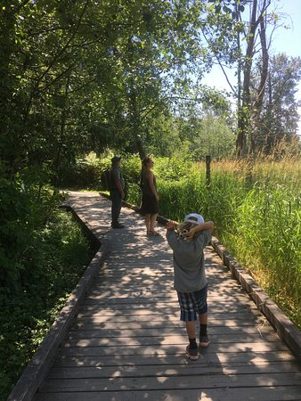Aldergrove, Canadá: Nice cool walking trails