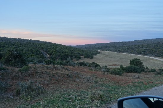 Addo Elephant National Park, Sudáfrica: DSC04675_large.jpg