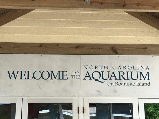 photo0.jpg - Picture of North Carolina Aquarium on Roanoke ...