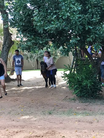 Fazendinha Caminho da Roca: photo3.jpg