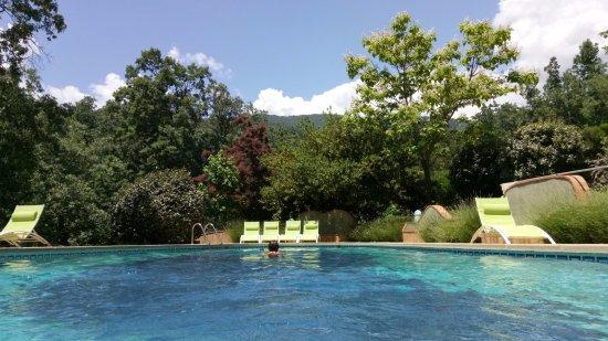 Hotel Rural El Camino: Nadando entre robles...Calma total