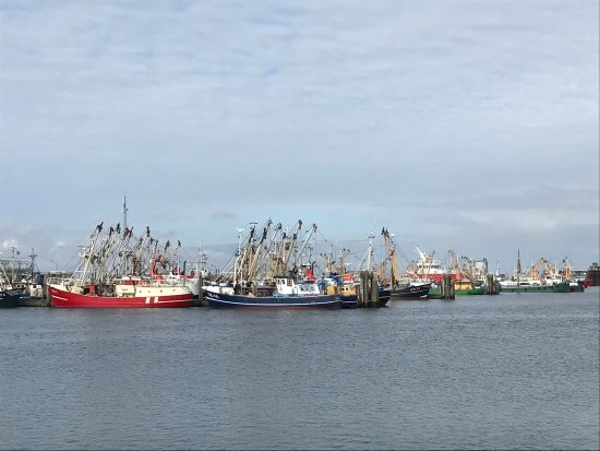 Lauwersoog, Belanda: photo5.jpg