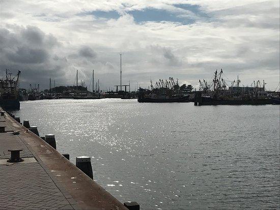 Lauwersoog, The Netherlands: photo6.jpg