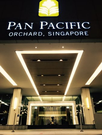 Picture of pan pacific orchard singapore - Pan pacific orchard swimming pool ...