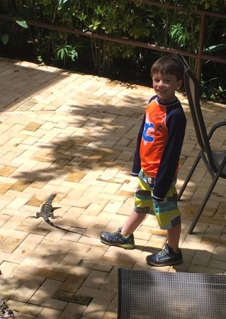 Falls Resort at Manuel Antonio: My son and his little friend.