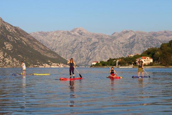 Denovici, Monténégro : explore Boka Bay on stand up paddle boards