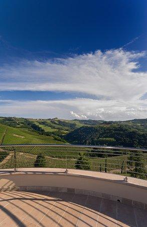 Il Boscareto Resort & SPA: Terrazza