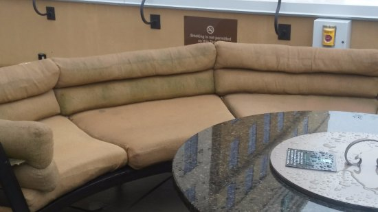 Embassy Suites by Hilton Chattanooga/Hamilton Place : Would you sit on this?