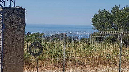 Carnoux, France: 20170716_104253_large.jpg