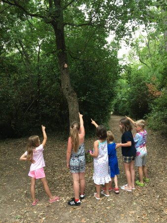 Azille, France: A new  fairy trail in the forest is great fun for children and adults and a great way to discove