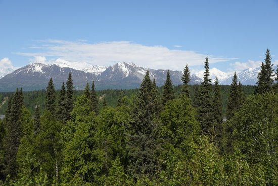 Trapper Creek, AK: Denai North viewpoint