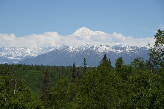 Trapper Creek, AK: Denali South viewpoint