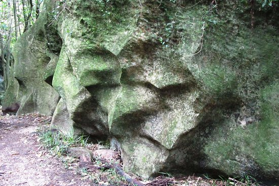 Tasman, Yeni Zelanda: Sculptured limestone rock