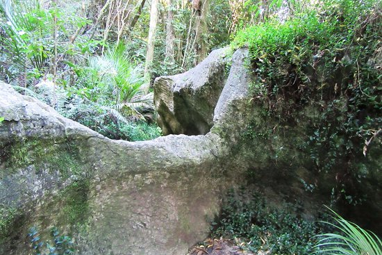 Tasman, Yeni Zelanda: Limestone rocks in luxuriant vegetation
