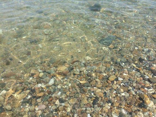 Oak Bluffs, MA: Crystal clear waters!