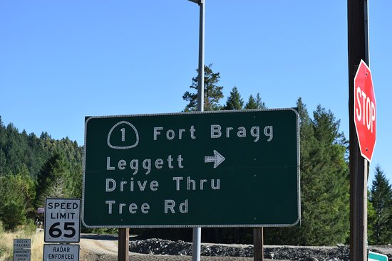 Leggett, Californien: Signage to the Tree