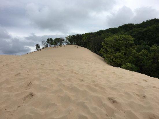 Bridgman, MI: view going up to mother dune