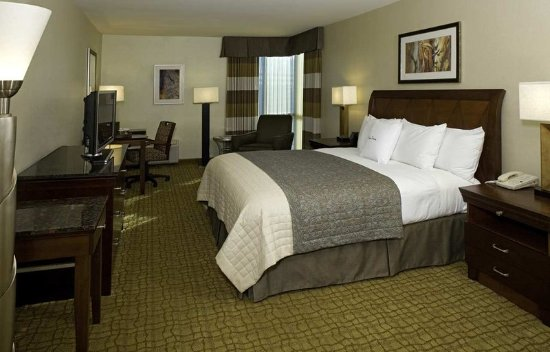 Bethesda, MD: King Guestroom