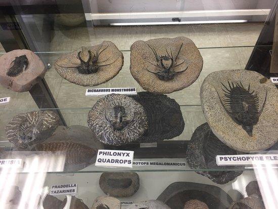 Franklin Mineral Museum : photo1.jpg