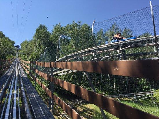 Alpine Coaster: photo1.jpg