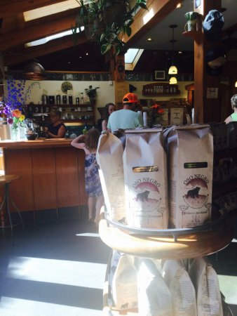 Nelson, Canadá: View from the line up, coffee is so good!