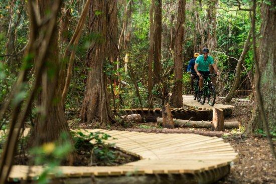 ริทซ์-คาร์ตันออร์แลนโด แกรนด์เลคส์: Mountain Bike Trail